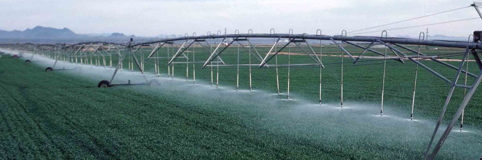 We provide irrigation services